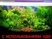 Удобрения(микро,  макро,  калий,  железо) удо для аквариумных растений..